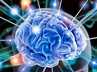 Витамины для головного мозга