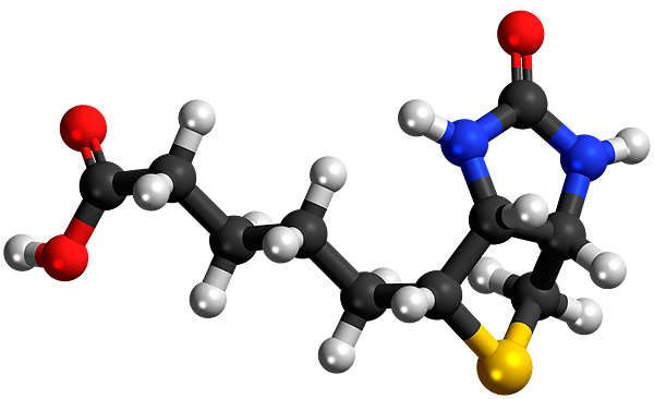 Витамин в7 для чего нужен организму